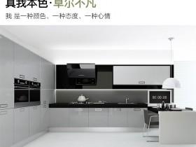 博洛尼橱柜图片 现代风开放式厨房真我本色橱柜