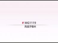 圣象地板MG1119风信子橡木产品介绍